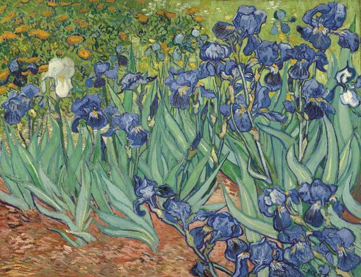 lirios - Vincent Van Gogh