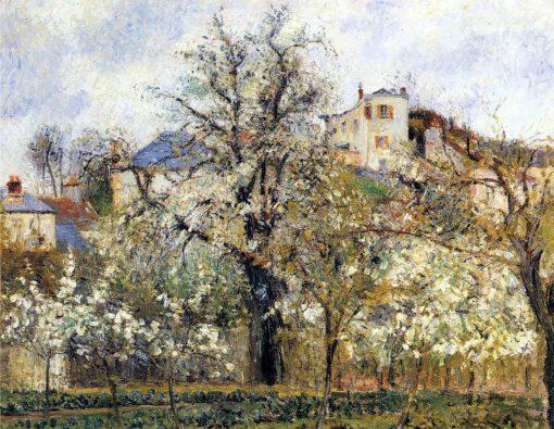 Primavera, ciruelos en flor, de Camille Pissarro