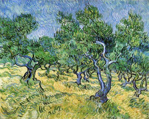 El olivar de Vincent Van Gogh