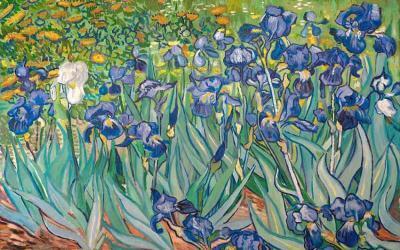Reproducción de Los lirios de Van Gogh